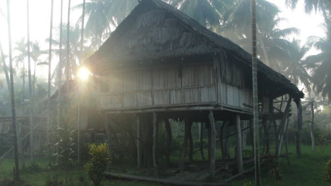 Morning mist; Samban, Papua New Guinea.