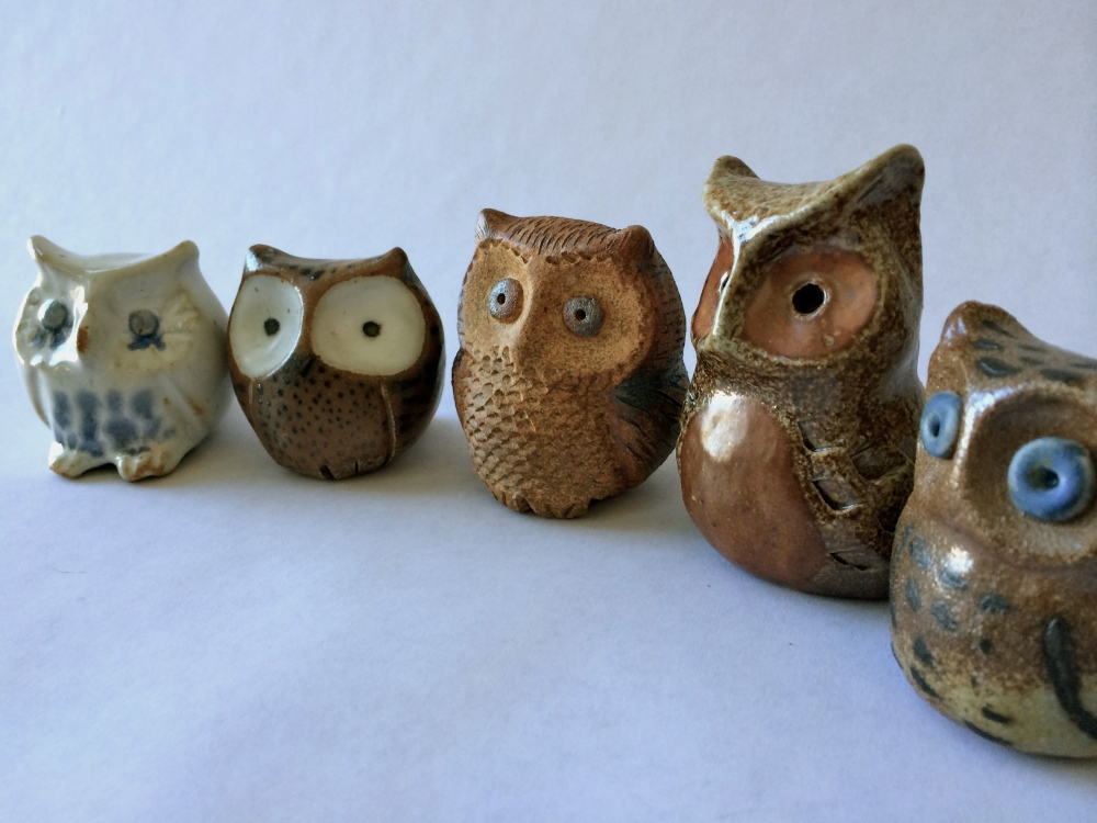 completed small owls