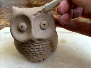 little owl making feathers