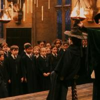 What does the Sorting Hat say?